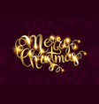 merry christmas text with glitter elements vector image vector image