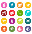 monkey types icons many colors set vector image vector image