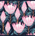 seamless pattern with high detailed protea vector image vector image