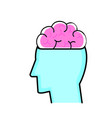 isolated brain and head design vector image