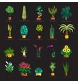Garden plants Potted flowers in the garden vector image