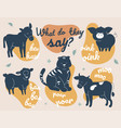 what do they say - modern vector image vector image