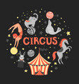 circus animal vector image