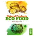 Eco food menu background Watercolor and hand vector image vector image