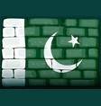 flag of pakistan painted on brickwall vector image