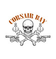 pirate skull and cannons design element for vector image vector image