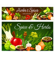 spice and herbs condiments banners vector image vector image