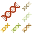 The DNA sign vector image vector image