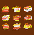 autumn half price advertising emblems foliage set vector image