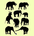 cute elephants animal silhouette in different pose vector image