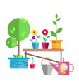 garden a young tree in a blue pot vector image vector image