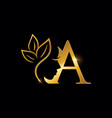 golden beauty initial letter a vector image vector image