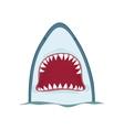 shark jaws vector image vector image