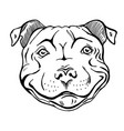 smiling dog face portrait vector image vector image