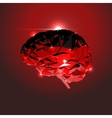 Abstract Human Brain vector image vector image