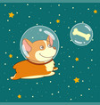 cute smiling dog dressed in spacesuit is flying in vector image