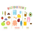 main food groups vector image vector image
