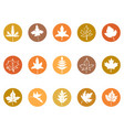 maple leaves button icons vector image vector image