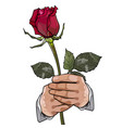 painted red rose in the hands of a man on a white vector image
