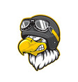 pilot eagle bird mascot aviator helmet goggles vector image vector image