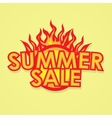 Sign sale offer with fire vector image