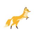 cartoon forest wild animal fox in a jump flat vector image