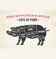 cuts of pork butchery diagram vector image
