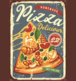 pizza slice with melted cheese vector image