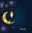 ramadan kareem islamic premium background vector image vector image