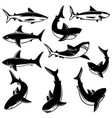set of shark design element for logo label print vector image