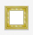 Gold Vintage Frame Decorative Picture vector image