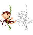 animal outline for monkey hanging on vine vector image vector image