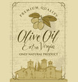 banner for olive oil with countryside landscape vector image vector image