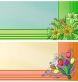 business cards with flowers vector image vector image