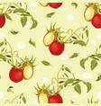 cream pattern with tomatoe and plant vector image