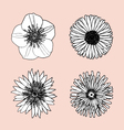 draw flower in top view vector image