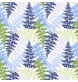 fern frond herbs tropical forest plant leaves vector image vector image