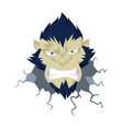 gorilla head angry monkey head ape vector image