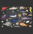 seafood and fish set on black background vector image