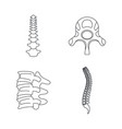 spine orthopedic vertebra icons set outline style vector image