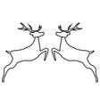 two reindeer jumping together on a white vector image vector image