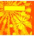Floral Orange Grunge vector image