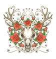 antler skull with rose flowers tattoo vector image vector image