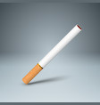business of a cigarette and harm vector image vector image