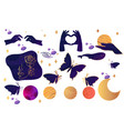 collection mystical vector image