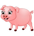 cute baby pig cartoon isolated on white background vector image