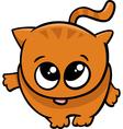 cute little cat cartoon vector image vector image