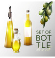 realistic olive oil template vector image vector image