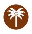 round icon beach palm cartoon vector image vector image