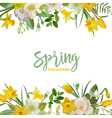 Spring Blossom Background - Flowers vector image vector image